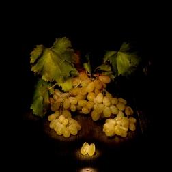 Settembre 2015 Light painting - Scrivere con la luce Natura Morta Uva Regina di Bari fotografie di Renato Franceschin